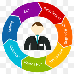 Human Resource Management System png free download