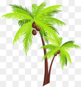 Coconut Tree Png Coconut Tree Vector Coconut Tree Leaf Coconut