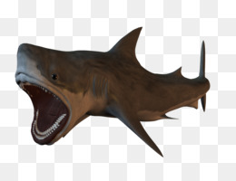 Sharks PNG   Sharks Transparent Clipart Free Download - Swordfish ... e2561d3da