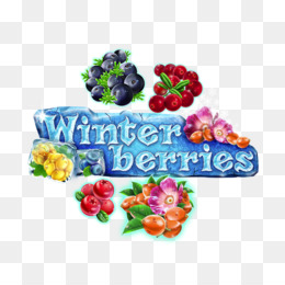 Fruit Machines Berries Game Player - winter berries