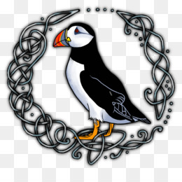 Puffin Browser png free download - Puffin Browser Web