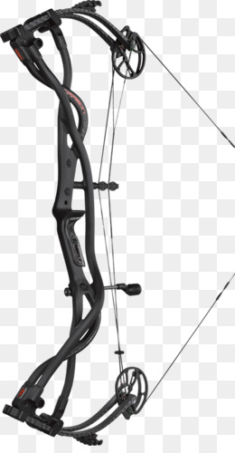 Bow And Arrow Hoyt Archery Carbon