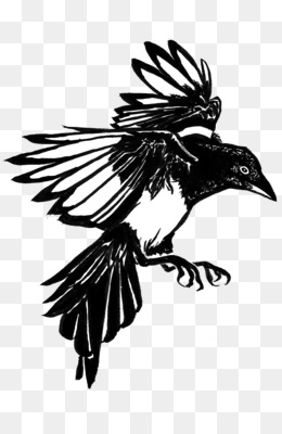 4ff6c246ade6d Tattoo artist Common raven Black-and-gray Tattoo ink - Ink Crow